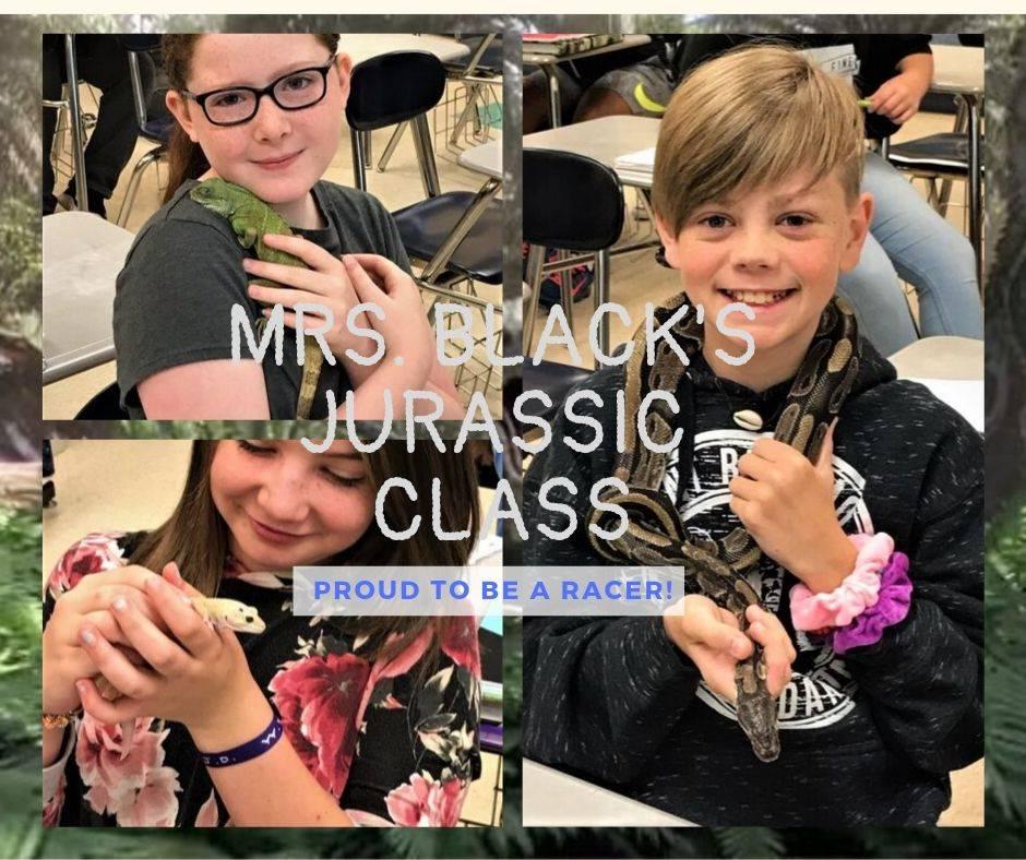 Mrs. Black's Jurrasic Class